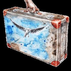 comprar pintura mate esmalte multiadherente al agua mate.